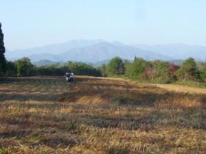 飯豊山と蕎麦畑